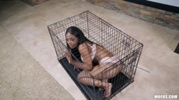 Poor busty ebony found in a cage